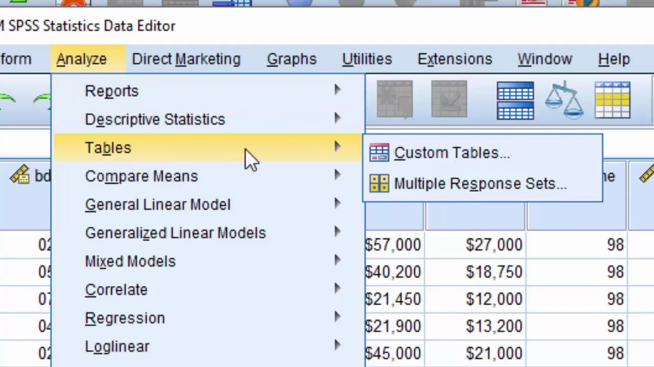 What's New in SPSS