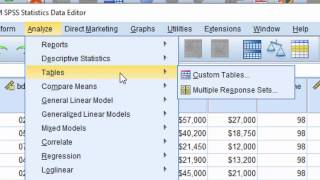 SPSS Statistics 24 Custom Tables