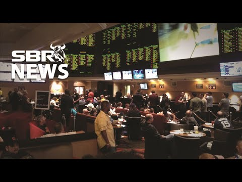 Find a Top Rated Online Sportsbook using the Rating Guide