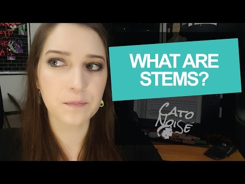 Audio Engineering Basics: What Are Stems?