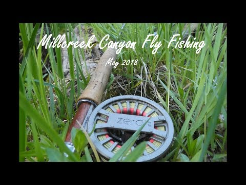 Millcreek Canyon Fly Fishing