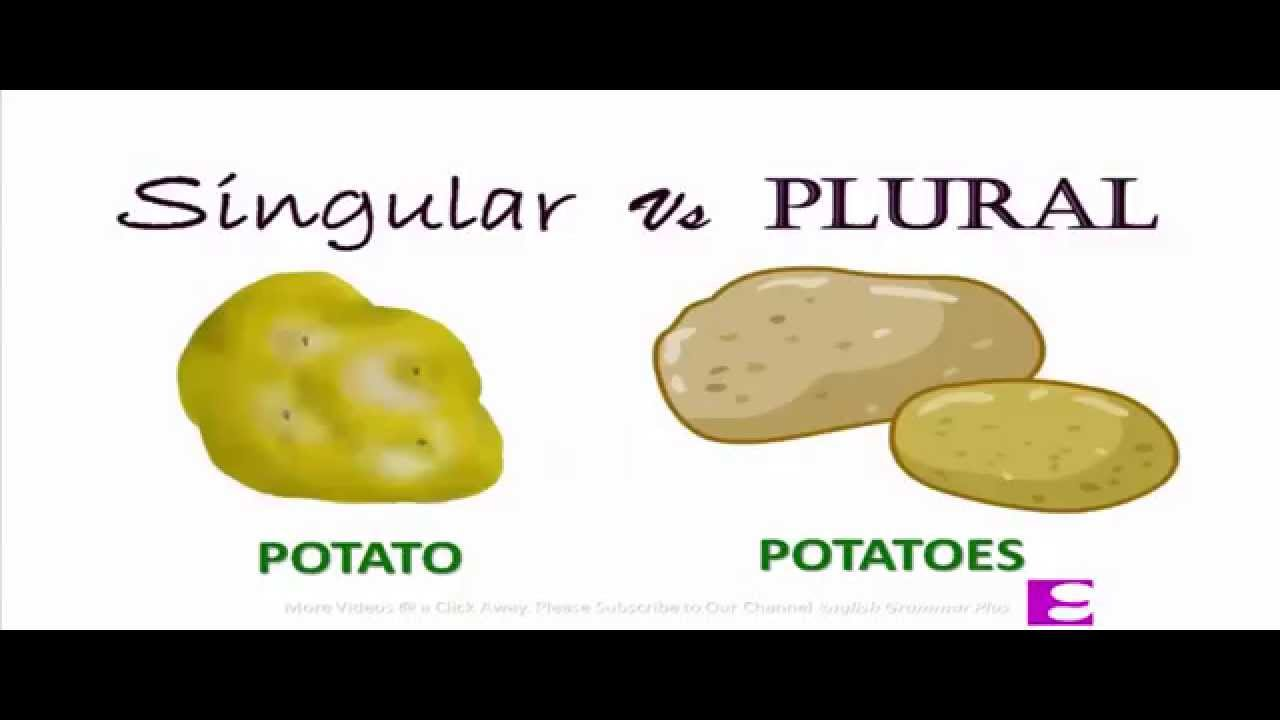 singular and plural forms of noun youtube