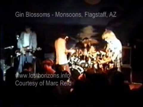 Gin Blossoms - Keli Richards