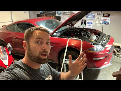 HEAVY BUILD 2019 MUSTANG GT UPDATE - WHERE IS MY CAR?