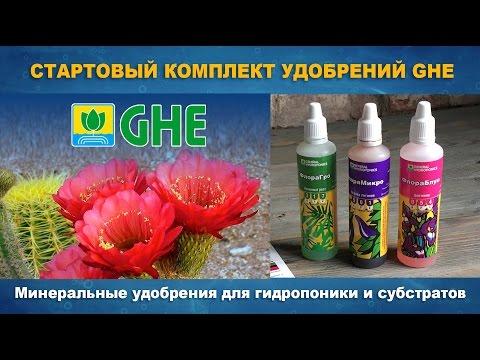 Гидропоника - выращивание растений