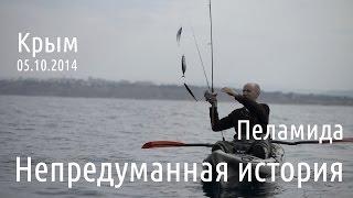 Ловля пеламиды в Чёрном море. Рыбалка с каяка.