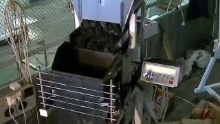 Весовой дозатор для фасовки и упаковки древесного угля в крафт мешки(Фасовка и упаковка древесного угля в крафт мешки на весовом дозаторе Макиз Д03. Воронка по которой сходит..., 2015-06-29T09:07:11.000Z)
