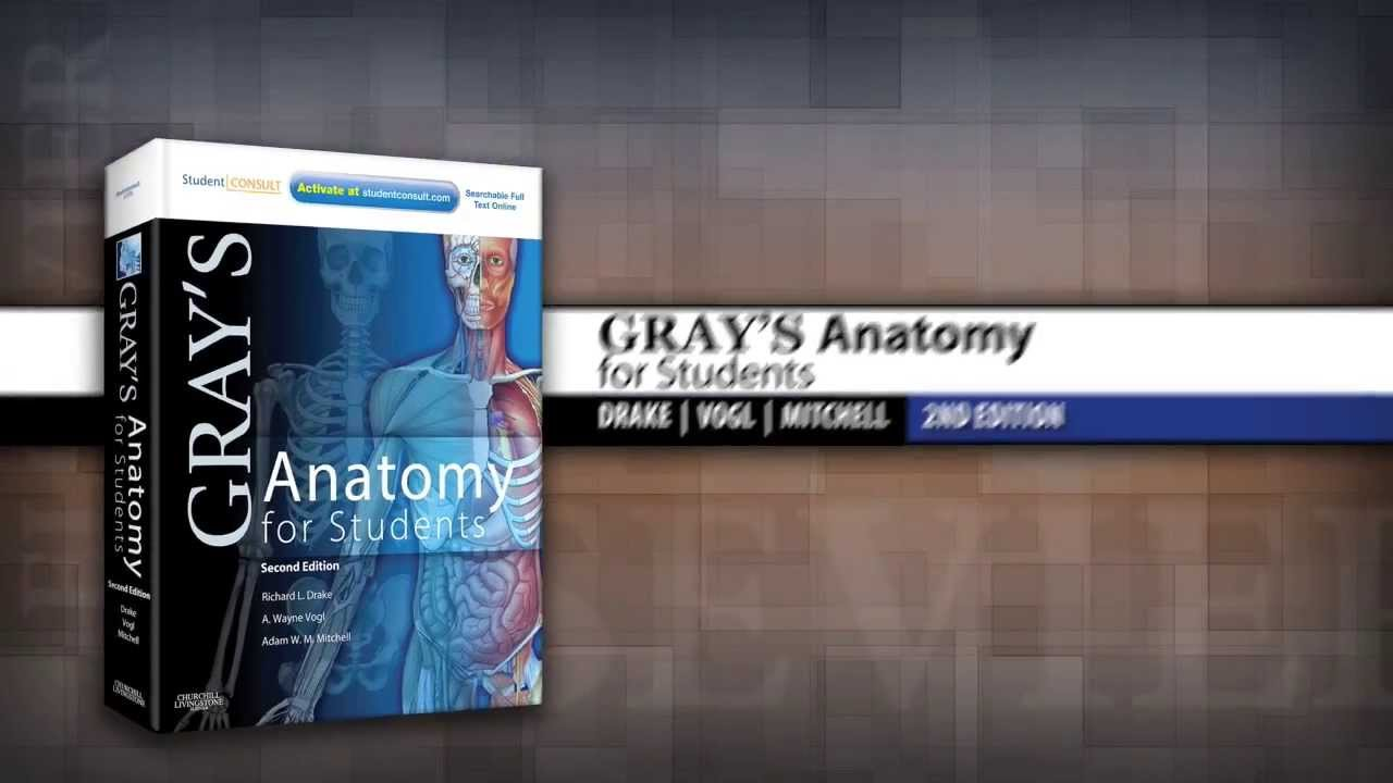 Greys Anatomy Book Pdf