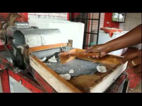 Trinidad Coconut Grating Machine