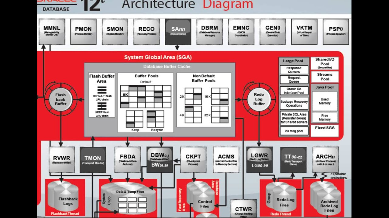 Database Architecture Diagram Bones Of The Skull Anterior View Oracle 12c Overview Youtube