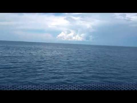 Ocean Jet | Business Class | Bohol Tagbilaran Bound