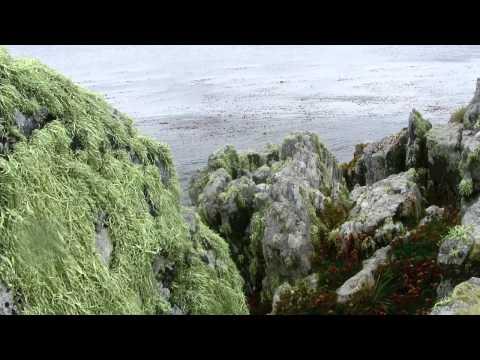 2015,Port Stanley,Falkland Islands   720p