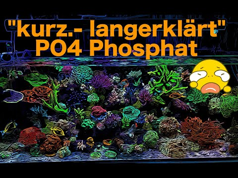 """kurz.--langerklärt""-po4-phosphat"