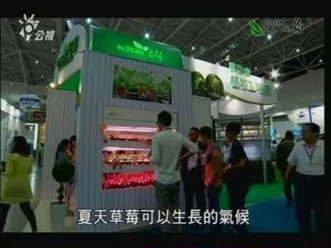 頂級蔬菜澎湖海水栽培冰花 2014植物工廠展慶聲科技 - YouTube