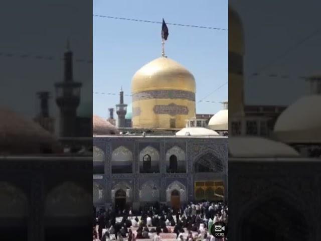 Shia Multimedia - YouTube