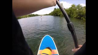 Clark The Cardigan Welsh Corgi Paddle Boarding - Gopro