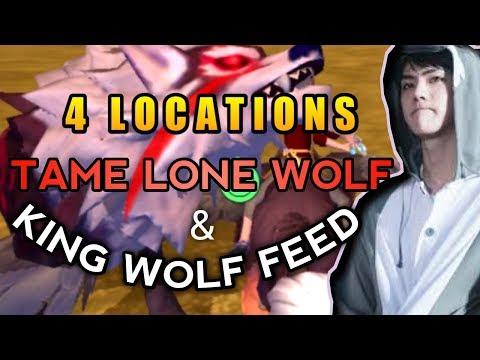 4 LOKASI DAN CARA TAME LONE WOLF - UTOPIA ORIGIN ANDROID # 44
