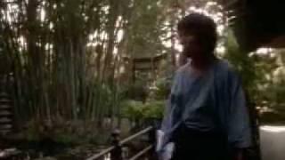 Video Revenge Of The Ninja(1983) download MP3, 3GP, MP4, WEBM, AVI, FLV Desember 2017