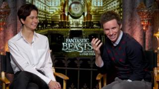 Fantastic Beasts and Where To Find Them Interview - Eddie Redmayne & Katherine Waterston