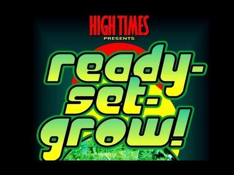 How To Grow Cannabis (Marijuana) Indoors - Vol 1 - Full Tutorial