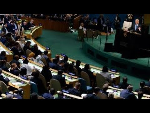 UN unaccustomed to aggression in Trump's speech: Stuart Holliday
