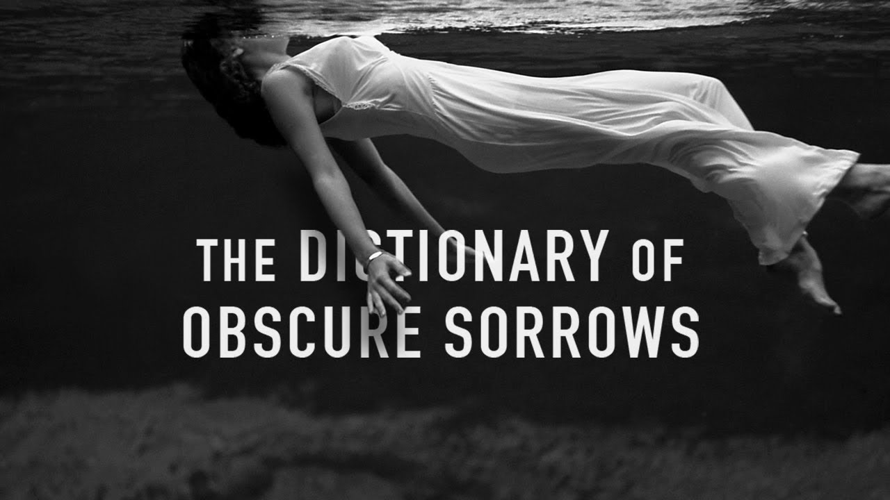 dictionary of obscure sorrows youtube