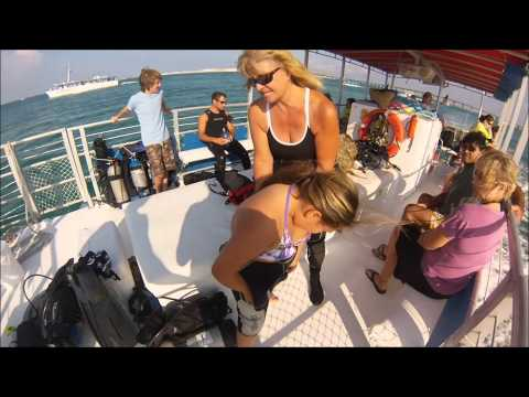 Diving | Emerald Coast Scuba, PADI Seal Team