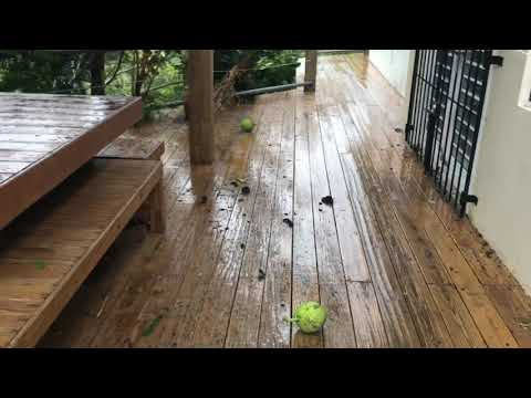 Live from vieques PR and Hurricane Irma