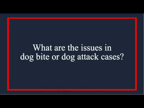 PA & NJ Dog Bite Laws - Issues In Dog Bite/Attack Cases