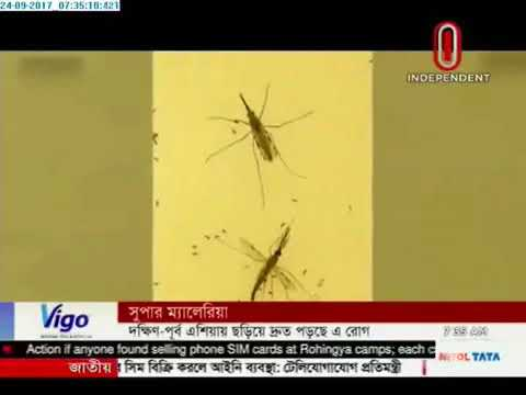Alarm as super malaria spreads in South East Asia (24-09-2017)