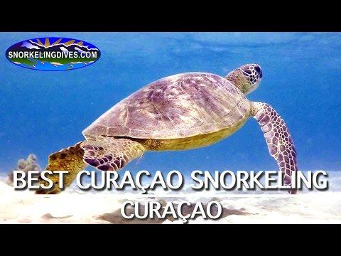 Best Curacao Snorkeling