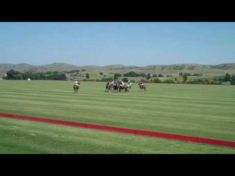 Flying H Polo-