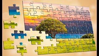 Пазлы головоломки
