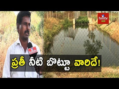 Water Conservation | Success Story Of Integrated Watershed Managemet In Kothapally   | hmtv Agri