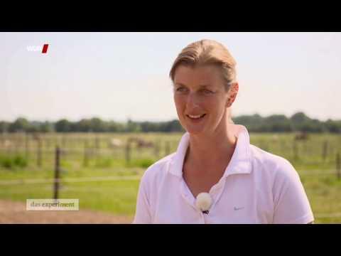Triup Führungskräftetrainerin Claudia Ahl beim WDR