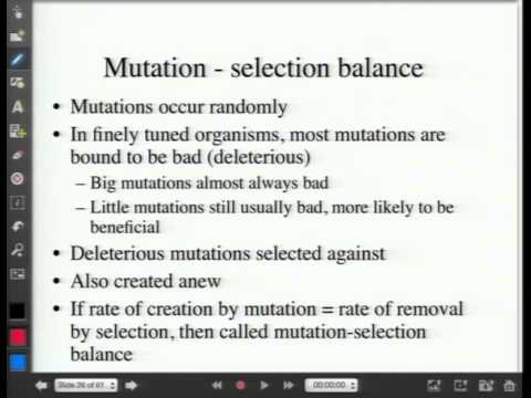 Hardy Weinberg, Mutation, Selection
