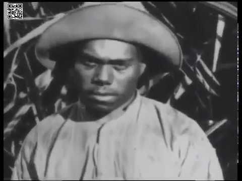 Pacific Slave Trade- Blackbirding
