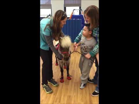 Marklund Day School student with mini horse