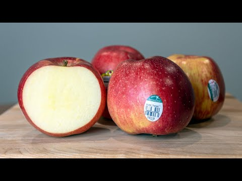 Wild Twist Apples Born Of Two Favorites