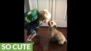 Kid kisses his dog goodbye before daycare