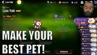 Epic Seven: Making Your Best Pet