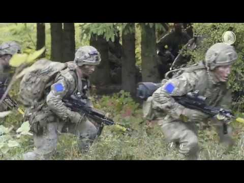 A Strong Europe: U.S. Army
