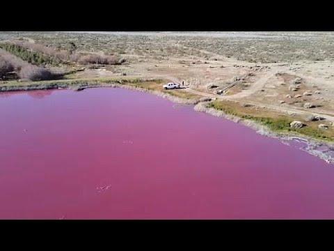 شاهد: التلوث يكسو بحيرة بلون الدماء في الأرجنتين  - 13:55-2021 / 7 / 30