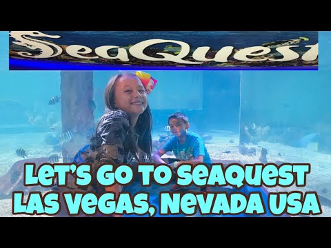 Let's Explore SEAQUEST Las Vegas, Nevada USA | Adventures in America
