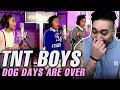 TNT Boys - Dog Days Are Over REACTION!!! の動画、YouTube動画。