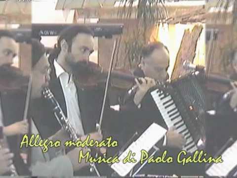 Allegro moderato-Musica di Paolo Gallina.mpg