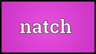 Natch Meaning