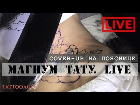 Cover-up/перекрытие  тату  на пояснице. Магнум тату. Live