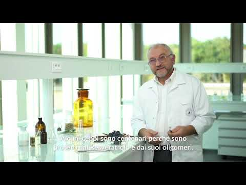 Caudalie Lab - Resveratrolo di Vite, un tesoro di giovinezza