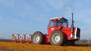 Golden Oldie: Massey Ferguson 1200 [Pure Sound] Ploegen   Ploughing   Pflügen